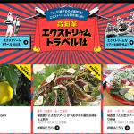 Websites DB:高知家 エクストリームトラベル社